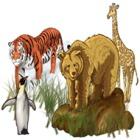 World Riddles: Animals spel