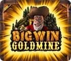 Big Win Goldmine spel