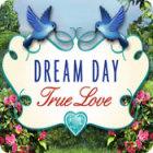 Dream Day True Love spel