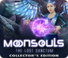 Moonsouls: The Lost Sanctum Collector's Edition spel